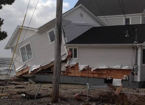Termite Inspection CT Hurricane Sandy Pests